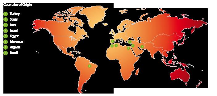 worldmap-figs