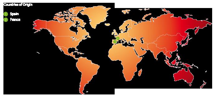 worldmap-paraguaya